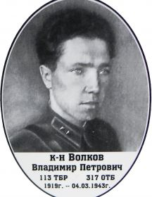 Волков Владимир Петрович