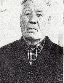 Синельников Михаил Евтихеевич
