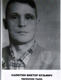Салютин Виктор