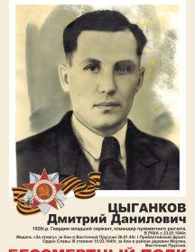 Цыганков Дмитрий Данилович