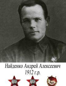 Найденко Андрей Алексеевич