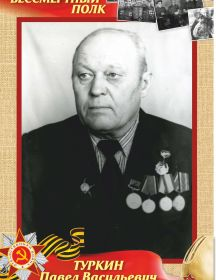 Туркин Павел Васильевич
