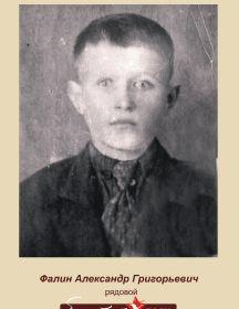 Фалин Александр Григорьевич