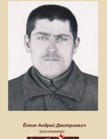 Ёлкин Андрей Дмитриевич