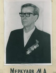 Меркулов Михаил Александрович