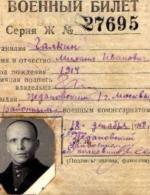 Галкин Михаил Иванович