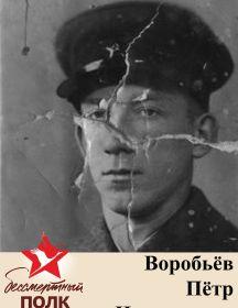 Воробьёв Павел Николаевич