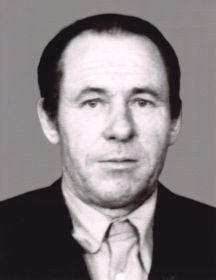 Николаев Николай Тимофеевич