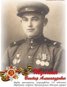 Шульгин Виктор  Александрович