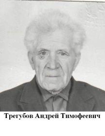 Трегуб Андрей Тимофеевич