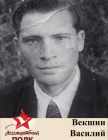 Векшин Василий Георгиевич, 1923-1970