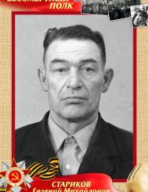 Струнин Сергей Иванович
