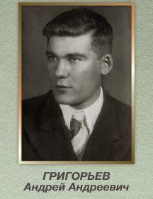 Григорьев Андрей Андреевич