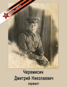 Черемисин Дмитрий Николаевич