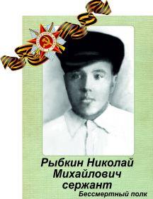 Рыбкин Николай Михайлович