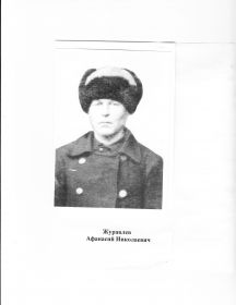Журавлев Афанасий Николаевич