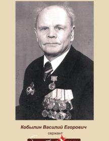 Кобылин Василий Егорович