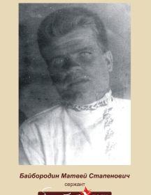 Байбородин Матвей Степанович