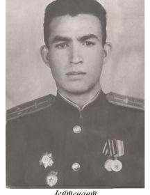Стёпин Николай Фёдорович