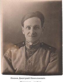 Попов Дмитрий Николаевич