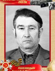 Пшеницын Геннадий Николаевич