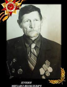 Пунин Михаил