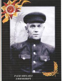 Раев Михаил Ефимович