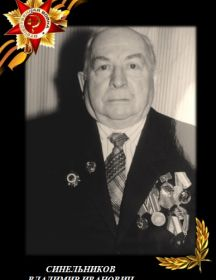Синельников Владимир Иванович