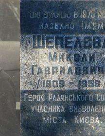 Шепелев Николай Гаврилович