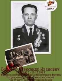 Боровко Александр Иванович