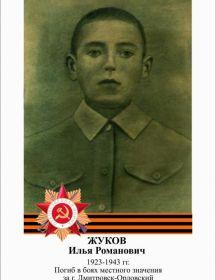 Жуков Илья Романович