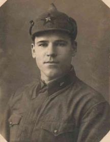 Янушкевич Николай Дмитриевич