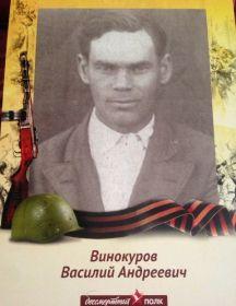 Винокуров Василий Андреевич