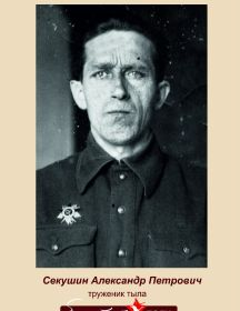 Секушин Александр Петрович