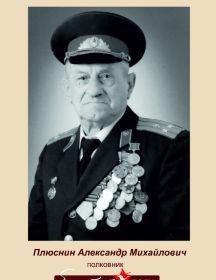 Плюснин Александр Михайлович