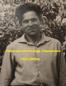 Палаткин Александр гаврилович
