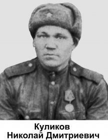 Куликов Николай Дмитриевич