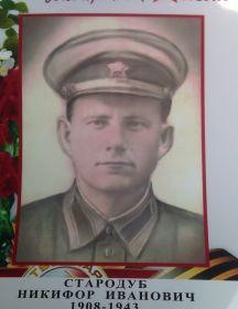 Стародуб Никифор Иванович