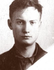 Боровиков Владимир Петрович