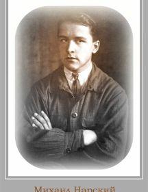 Нарский Михаил Владимирович