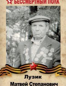 Лузик Матвей Степанович
