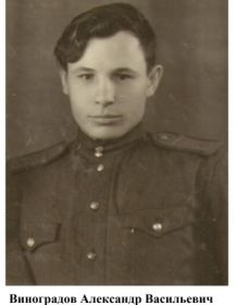 Виноградов Александр Васильевич