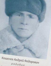 Кошелев Андрей Федорович