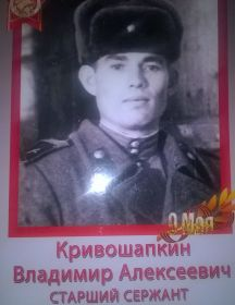 Кривошапкин Владимир Алексеевич