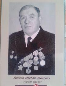 Княжев Степан Иванович