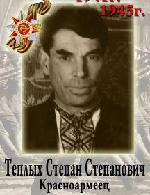 Теплых Степан Степанович
