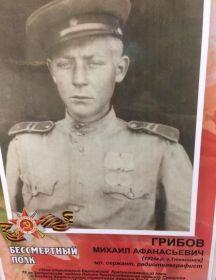 Грибов Михаил
