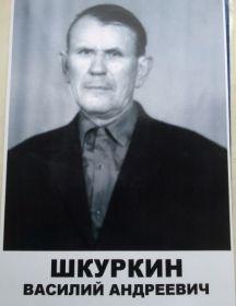 Шкуркин Василий Андреевич