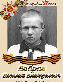 Бобров Василий Дмитриевич