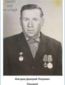 Жигарев Дмитрий Петрович